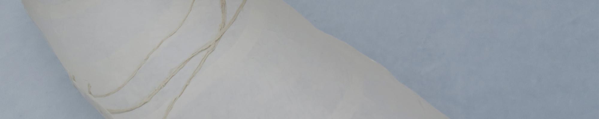 transparante schaal van rijstpapier © 2021 Anne-Riet de Boer