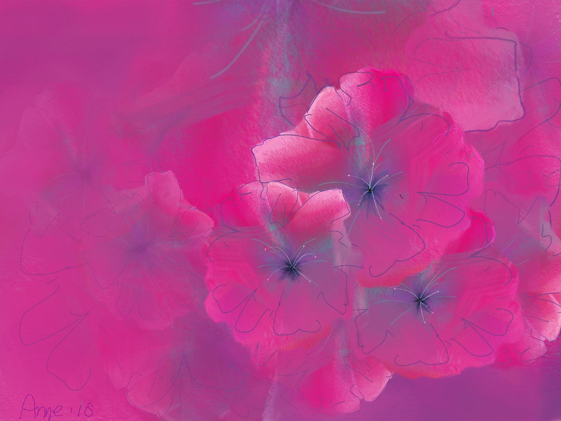 bloemen in magenta roze © Anne-Riet de Boer