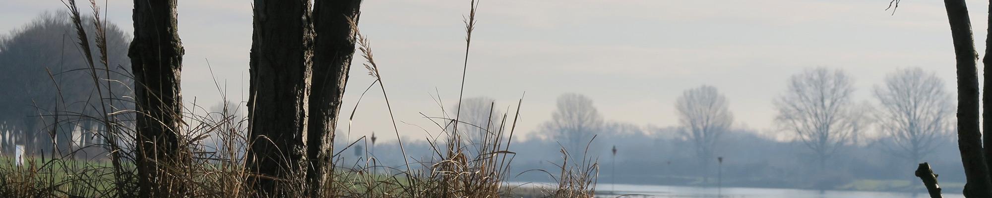 Maasoever © Anne-Riet