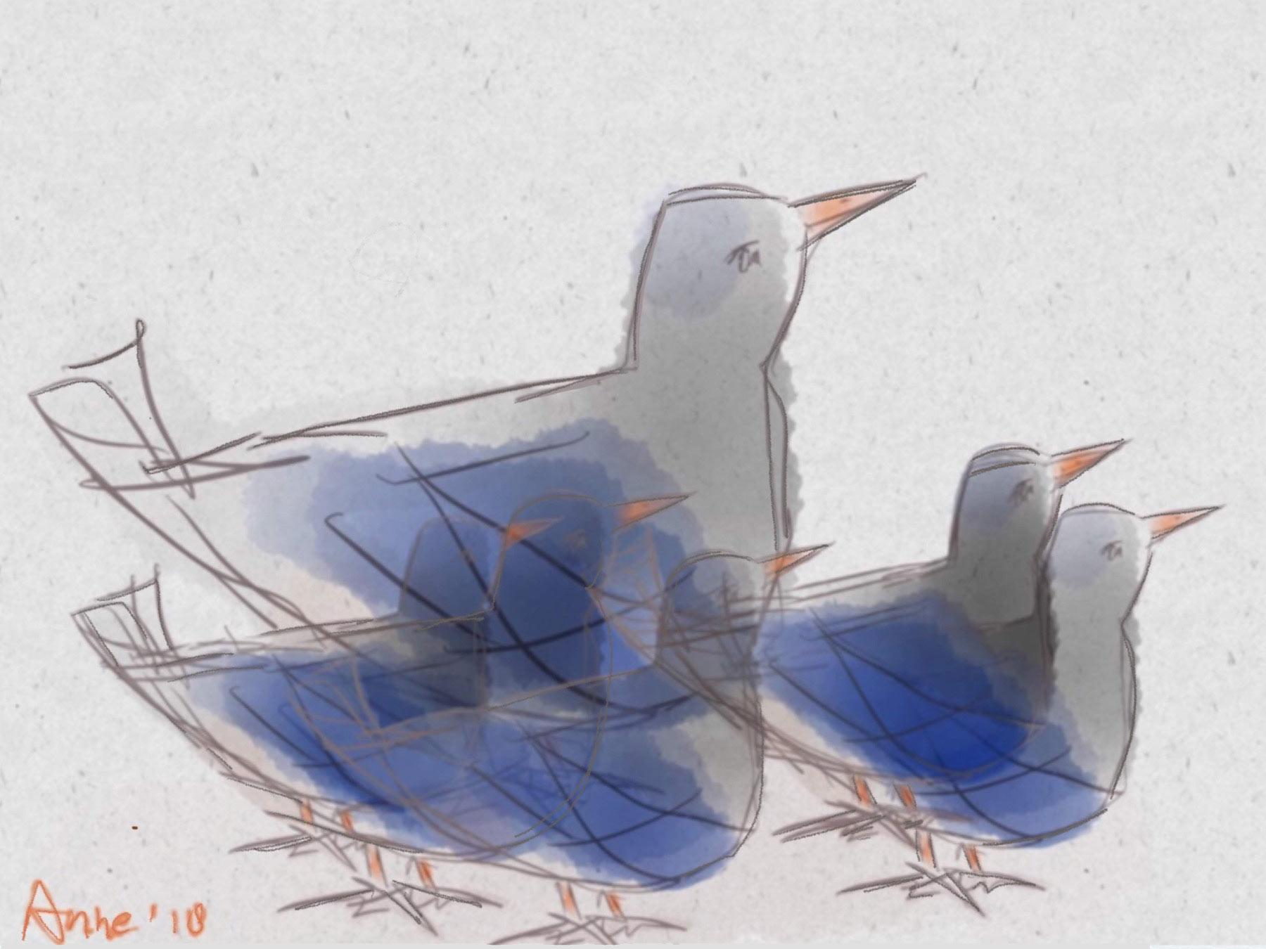 de blauwe vogels @ Anne-Riet de Boer